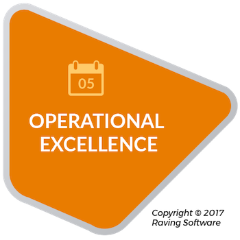 Operational excellence is one of the 8 components of Raving Software's philosophy.