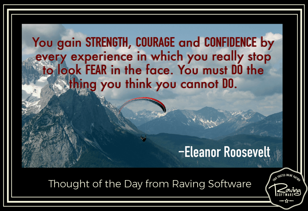Let Raving Software help you conquer your business fears.