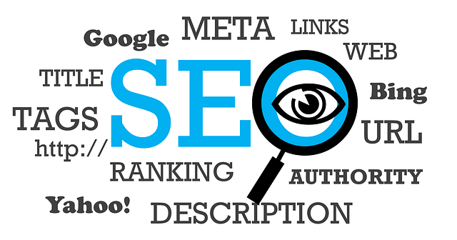 Raving Software Search Engine Optimization SEO